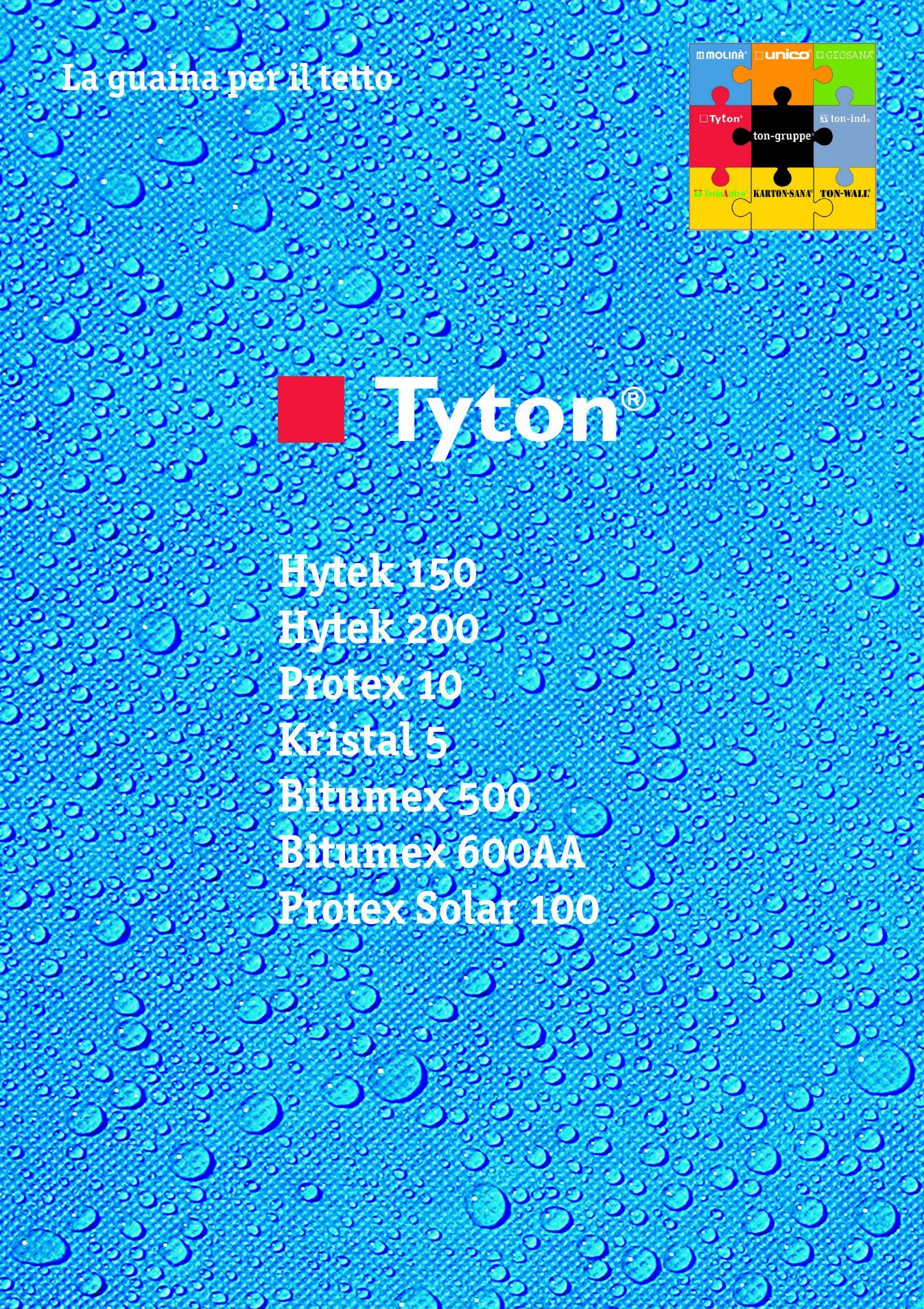 Tyton_IT_2011.pmd